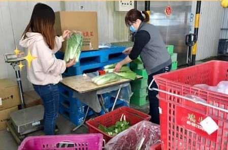 武漢肺炎疫情打亂農產品銷售通路  雲林縣府積極媒合協助