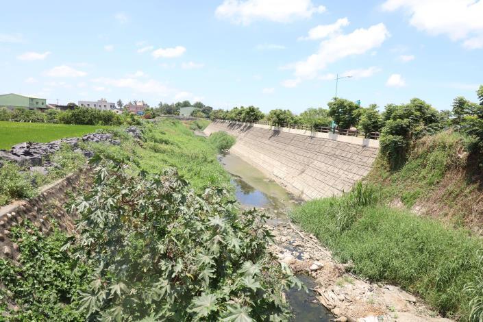 延潭大排既有土坡,雜草叢生,提岸高度不足。