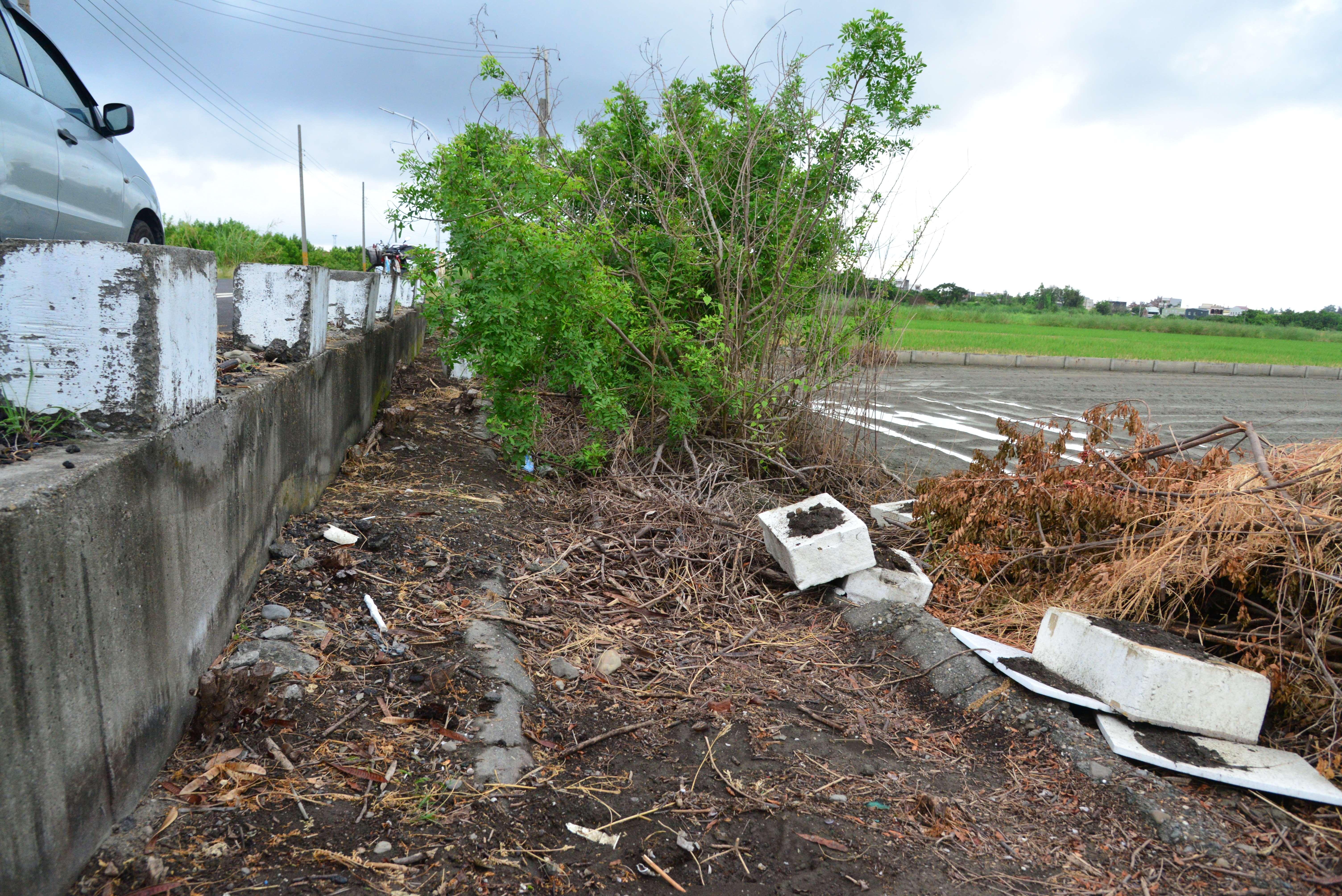 口湖鄉順興農地重劃區內的排水溝渠淤積嚴重,亟待改善。