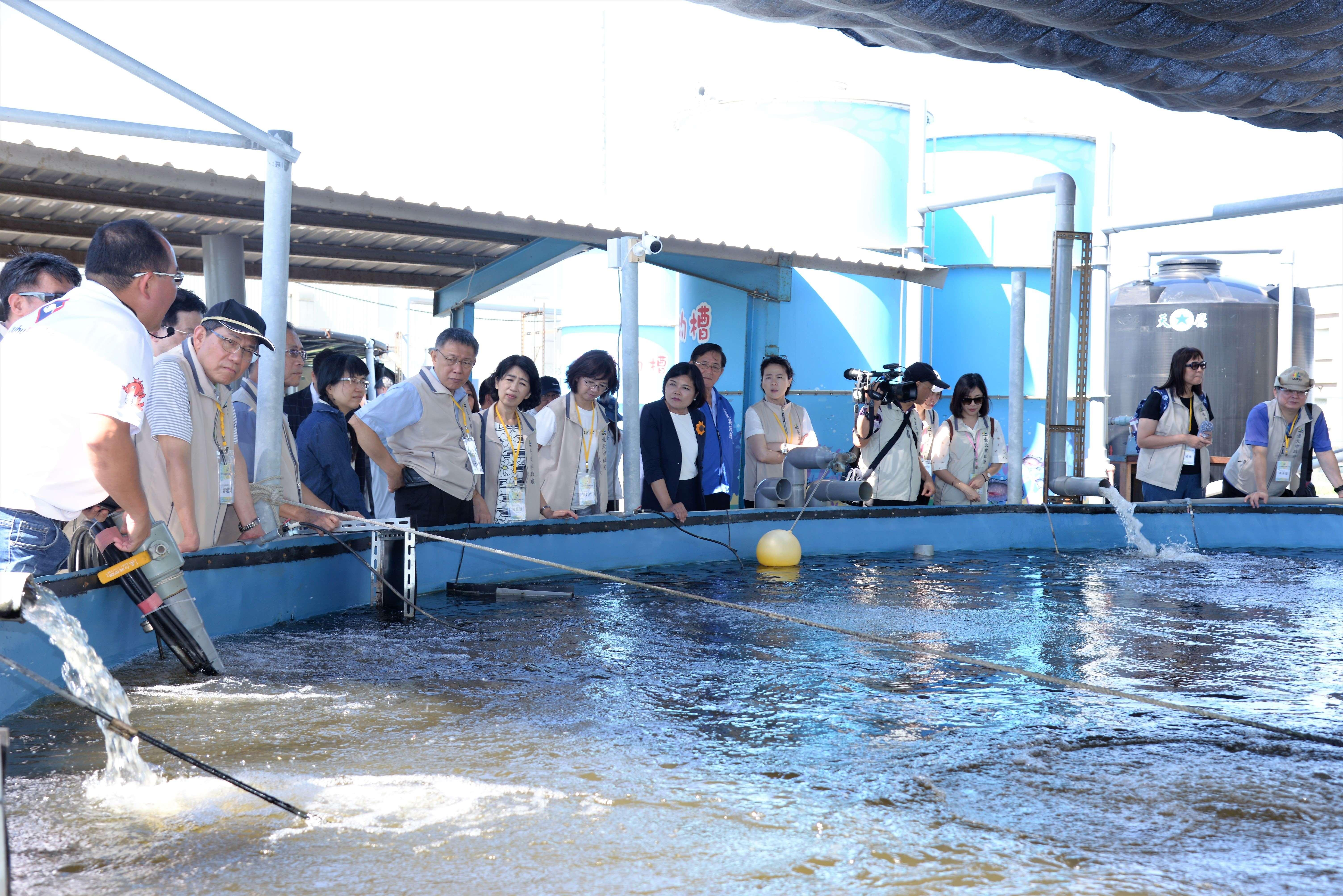參觀台灣鯛智能養殖