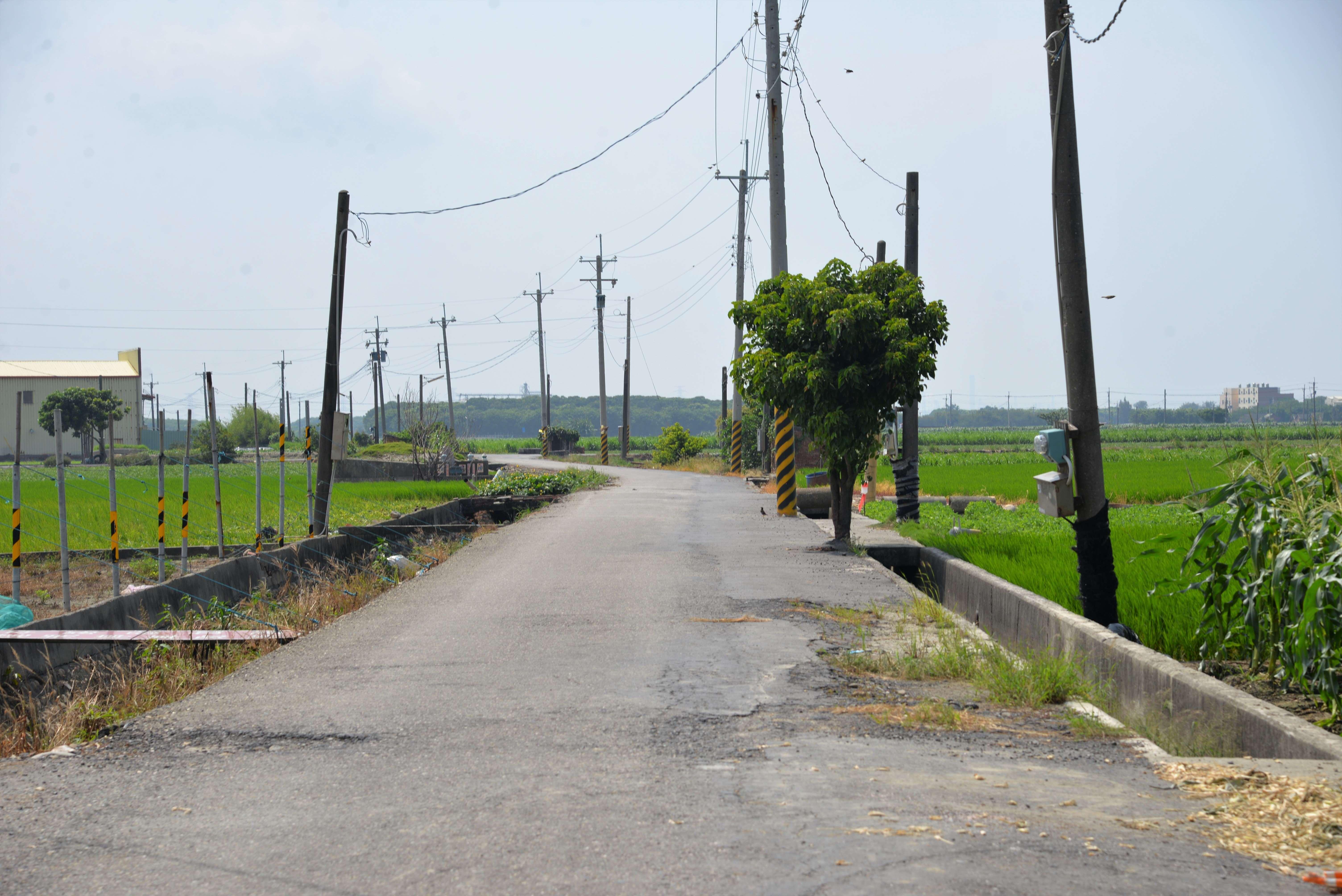 此次就農路路面寬度未達4公尺者,將拓寬至4-6公尺,並將農路併行之給、排水路一併配合辦理,改善為矩形溝(立溝)