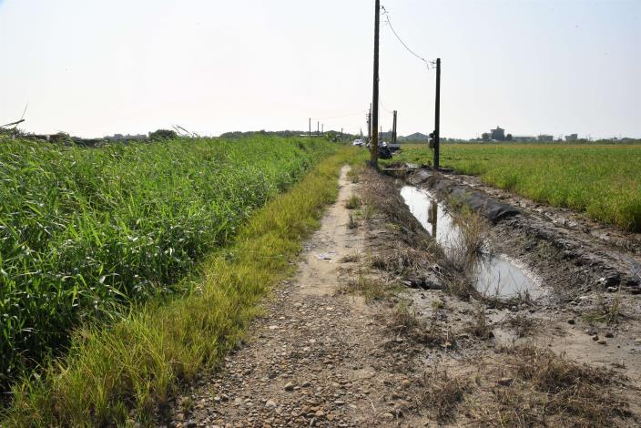 順興農地重劃區西13農水路現況