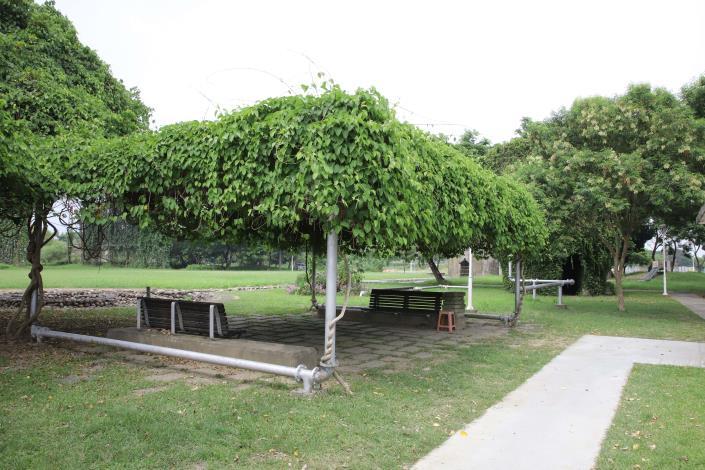 林內自辦重畫區內有大片草地及綠蔭,經常有民眾前往運動散步。