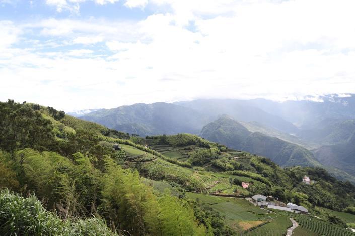 雙尖步道(大尖山與二尖山)峰頂視野廣闊