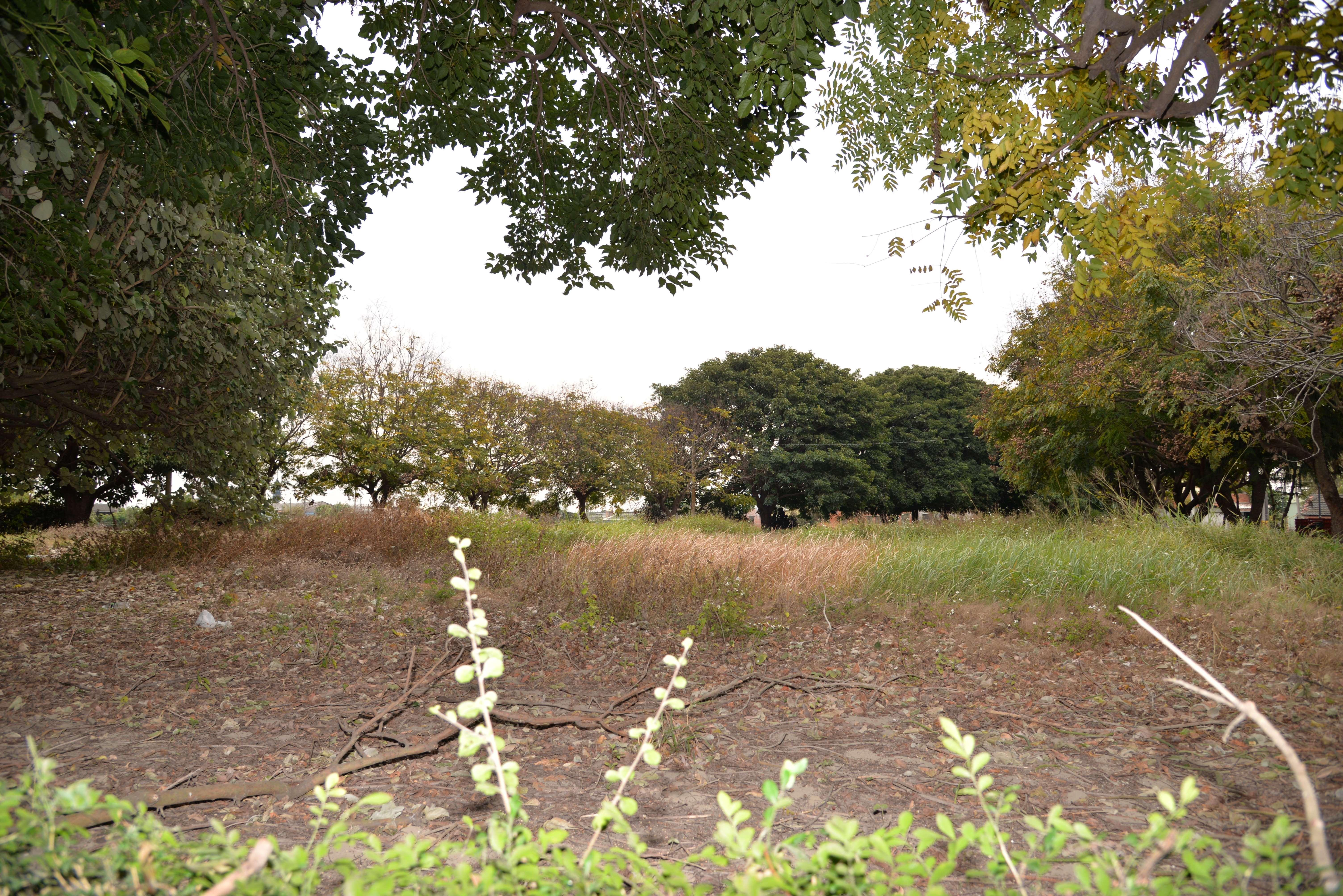 北溪公園旁私人土地,地主有意配合縣府規劃做為適合長者的運動休閒場域