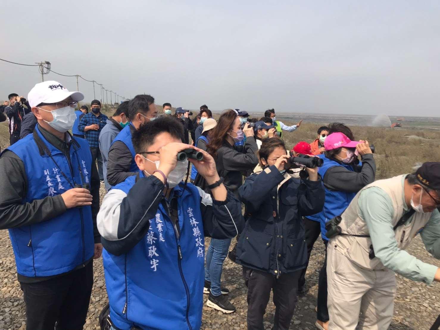 鳥類生態觀察