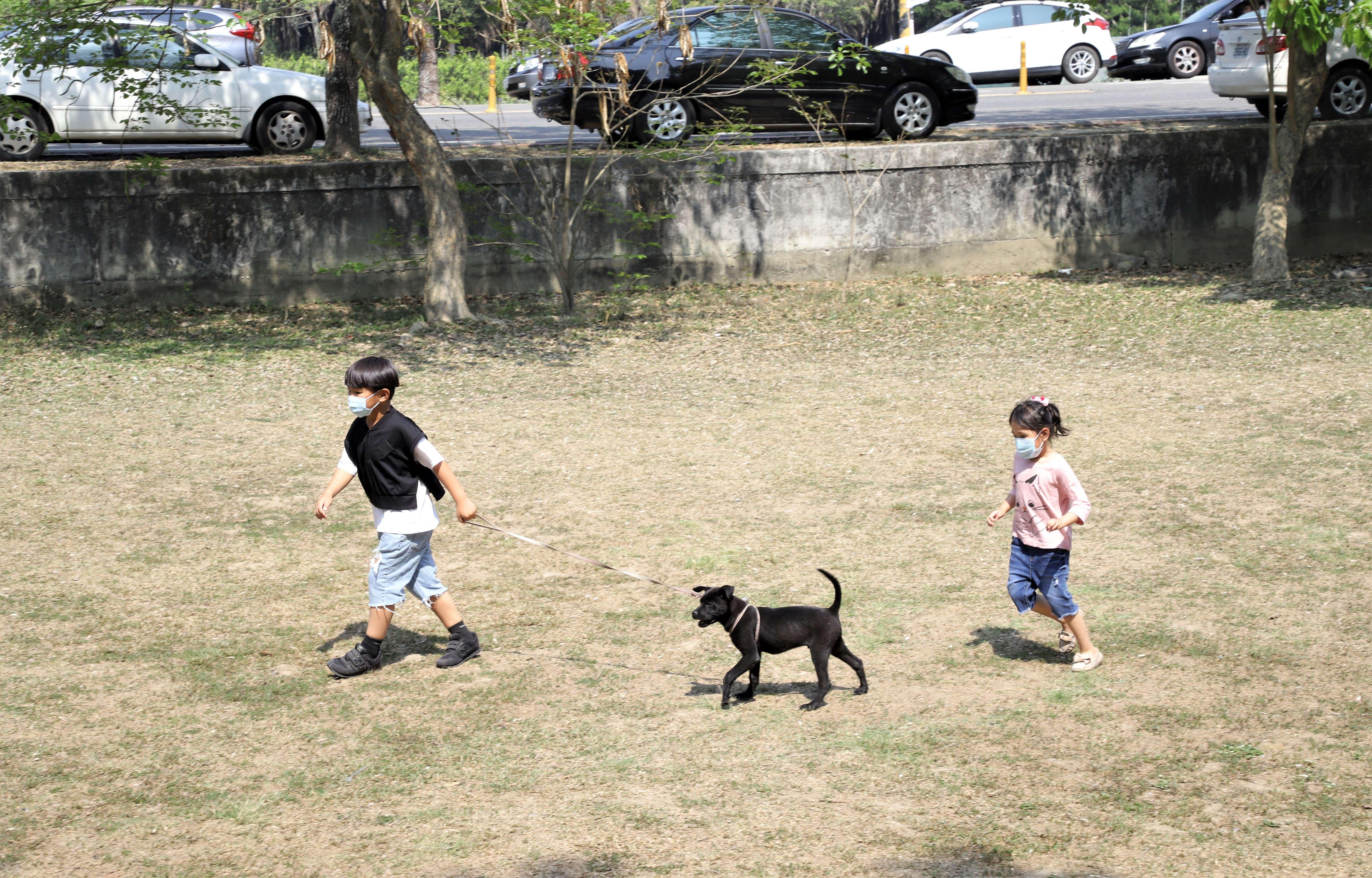 狗是人類最忠實的朋友,有牠們的陪伴,總是充滿歡樂與笑聲。