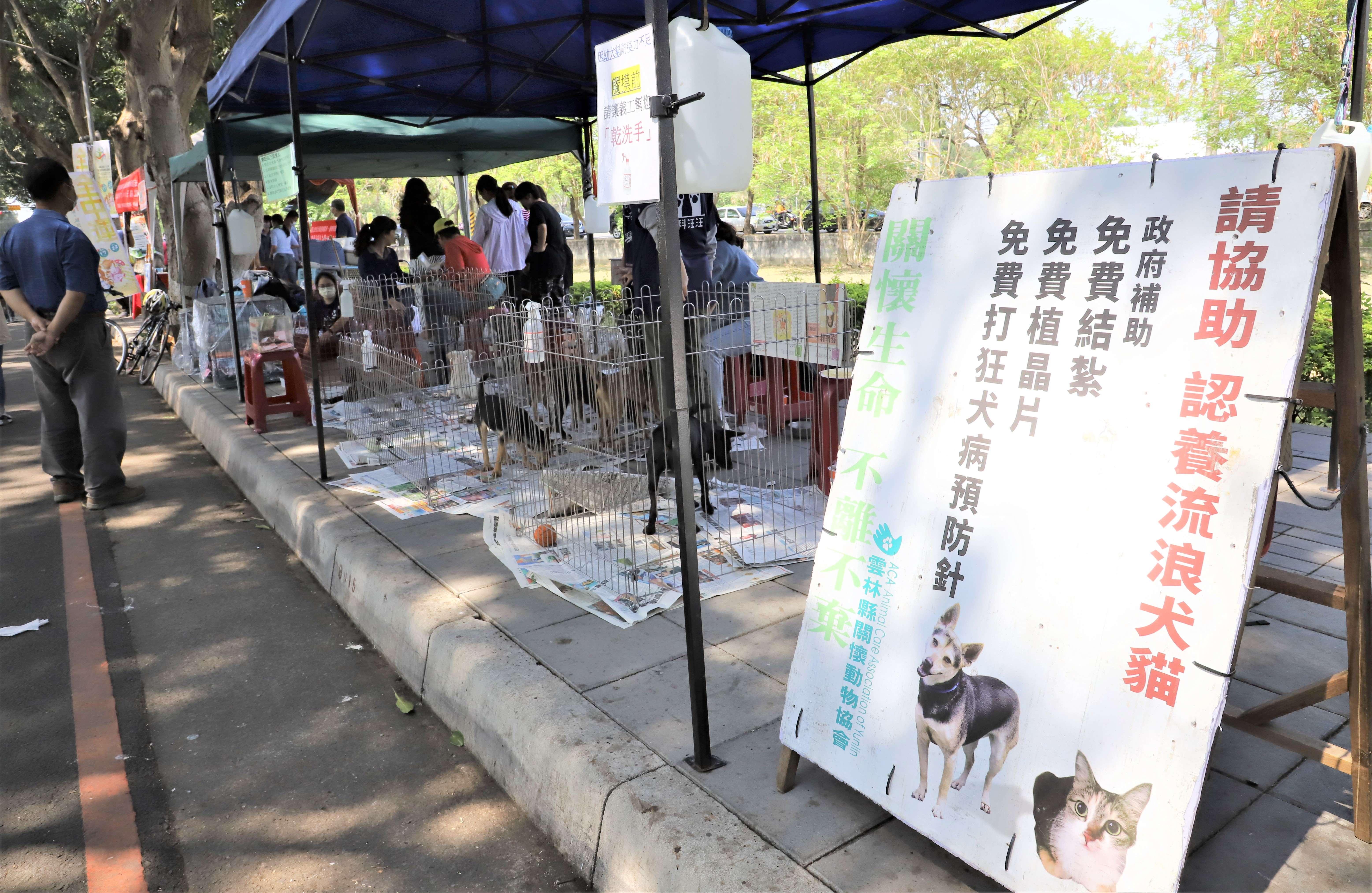 縣府與動物保護協會攜手推廣「讓浪浪永遠有個家」,盼更多人能夠加入認領養行列。