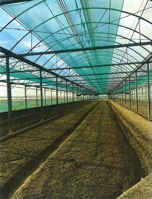 110年有機農業生產輔導計畫補助開始申請囉!