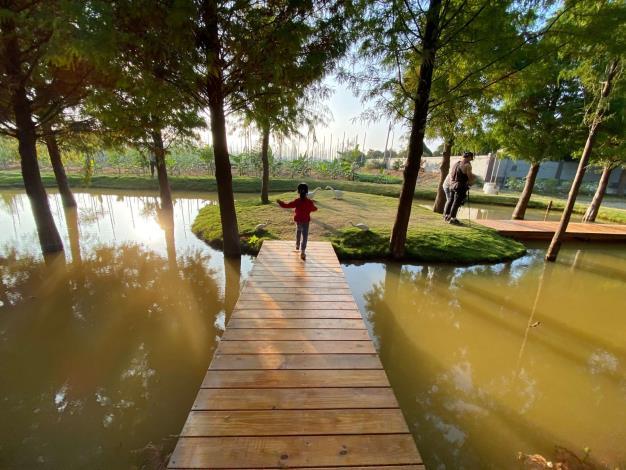 虎尾堀頭社區【落羽松祕境公園•夢幻童年Larix Pine Secret Park•Dream Childhood】