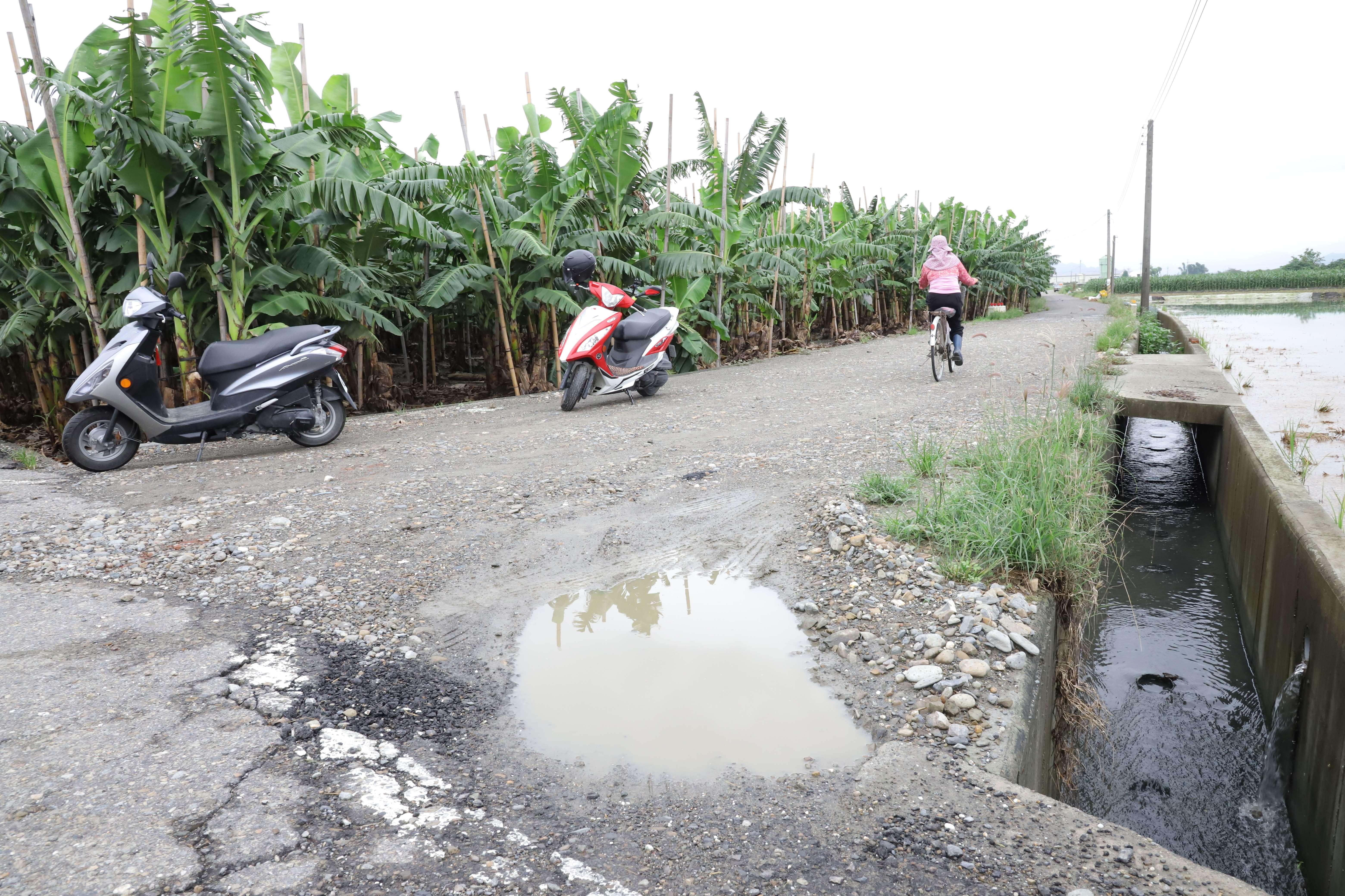 莿桐鄉鹿場及大埔尾(二)農地重劃區農路,50多年來都是石頭路,路面顛簸,下雨容易積水、打滑,影響行車安全。
