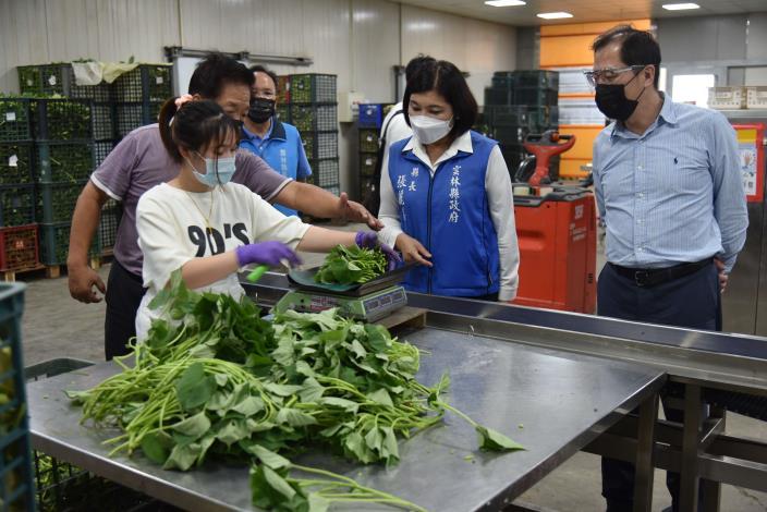 張縣長視察漢光果菜生產合作社包裝蔬果情形