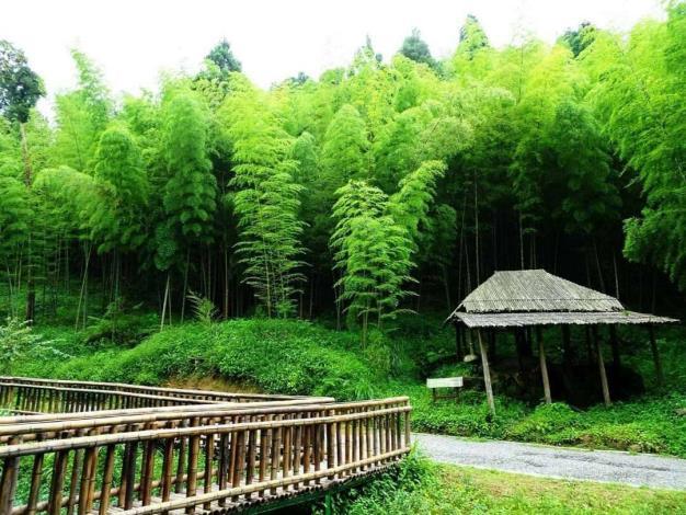 「石壁竹創森計畫」以五元二角、雲嶺之丘、木馬古道等知名景點周邊約100公頃之縣有遊憩用地為計畫範圍。