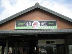 水尾村欣昌錦鯉場.JPG