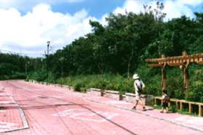 防風林自行車步道01