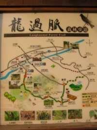 龍過脈森林步道-1