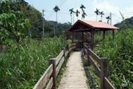 湖本觀光農園